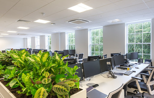 Office Furniture & Plants - Space
